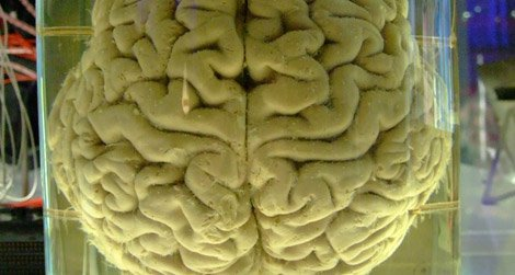 Computers are coming closer and closer to mimicking the human brain.