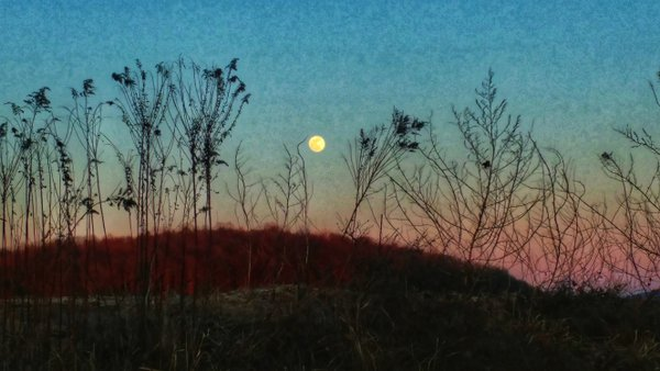 Supermoon in the Country  thumbnail