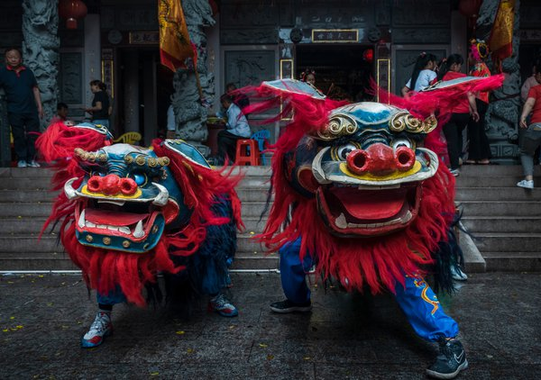 The Dragon Dancers thumbnail