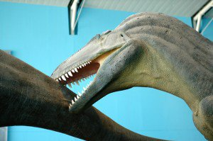 20110520083153acrocanthosaurus-astrodon-300x199.jpg