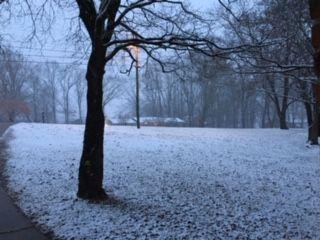 Snowfall at dusk thumbnail