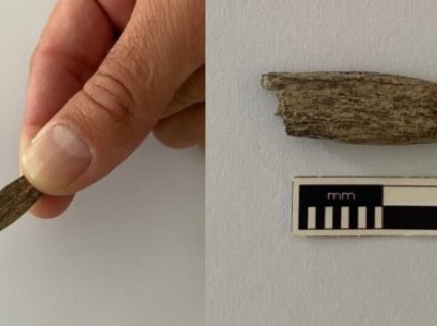 The tool is between 3,800 and 5,300 years old.