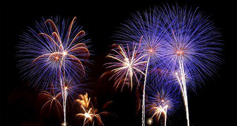 Fireworks can startle birds so badly they become disoriented