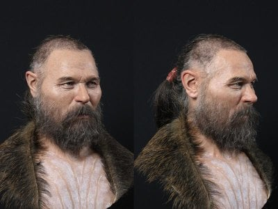 Facial reconstruction of a Scandinavian hunter-gatherer who was buried with a wooden stake at the base of his skull