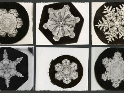 """The original photos from late 1800s by famous snowflake photographer Wilson """"Snowflake"""" Bentley, are stored in the Smithsonian Archives. His pictures were instrumental in helping scientists examine snow's crystalline properties."""