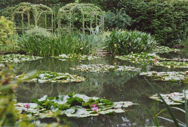 Monet\'s garden thumbnail