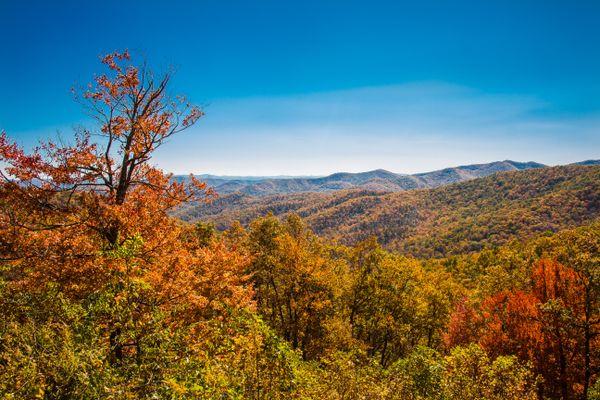 Autumn color spectacle thumbnail