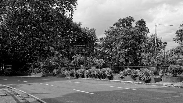 Silent Road thumbnail