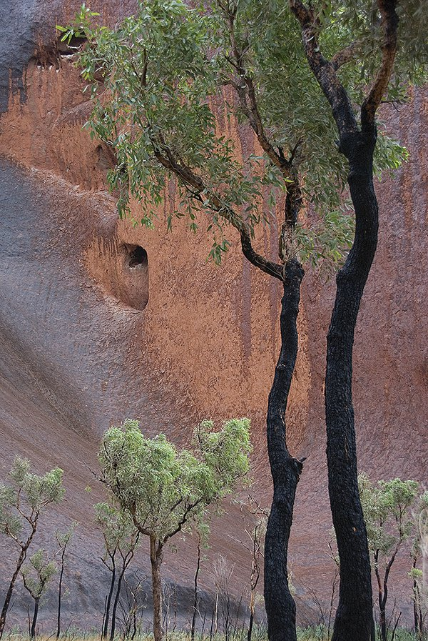 Rainy Day at Ayers Rock thumbnail