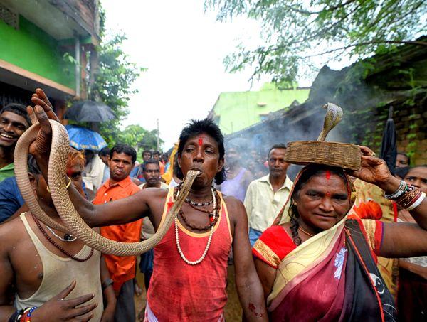 Jhapan Festival thumbnail