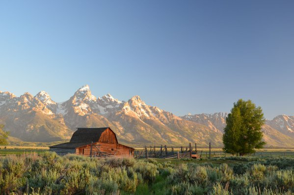 Sunrise at Mormon Row, Grand Teton National Park thumbnail