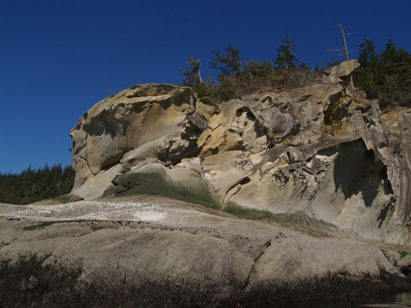 Wind carved sandstone on Bellingham Bay thumbnail
