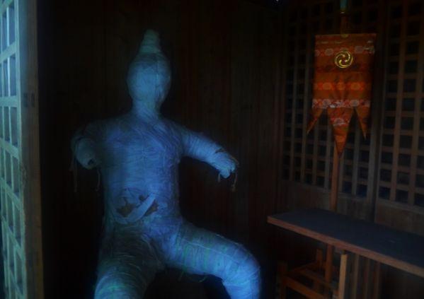 The sacred idol at the old shrine on phantom Isle thumbnail