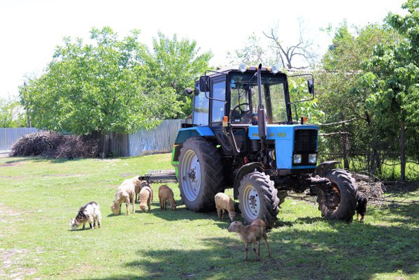 tractor thumbnail