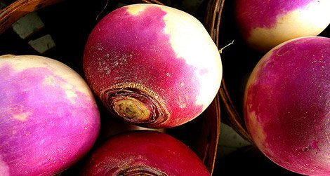 What was the secret to Grandma's turnips?
