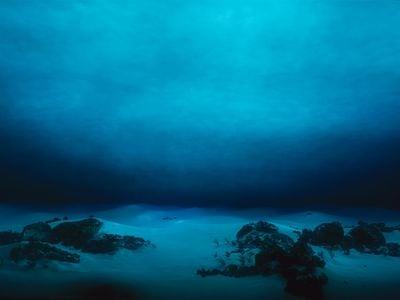 The vast unknown deep sea floor