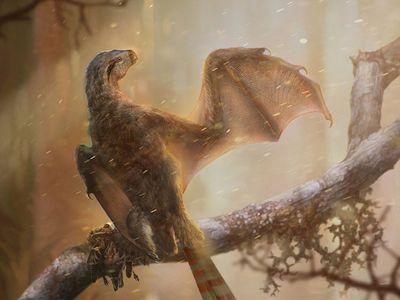 Life reconstruction of the bizarre membranous-winged Ambopteryx longibrachium.