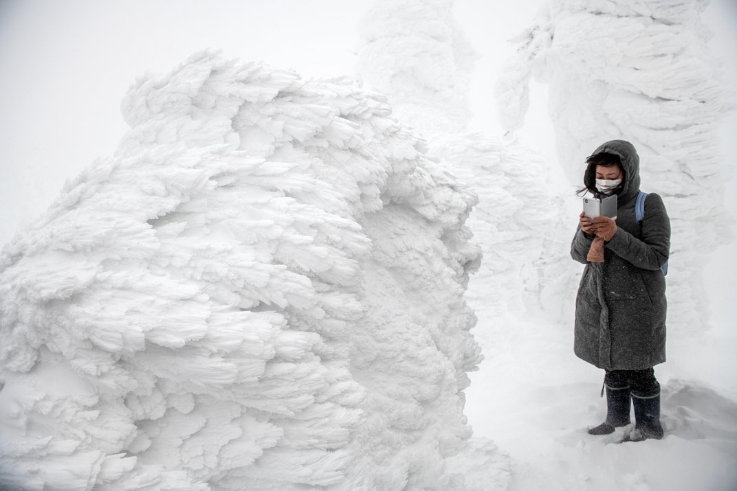 Arboreal 'Snow Monsters' Overrun Northern Japan Every Winter