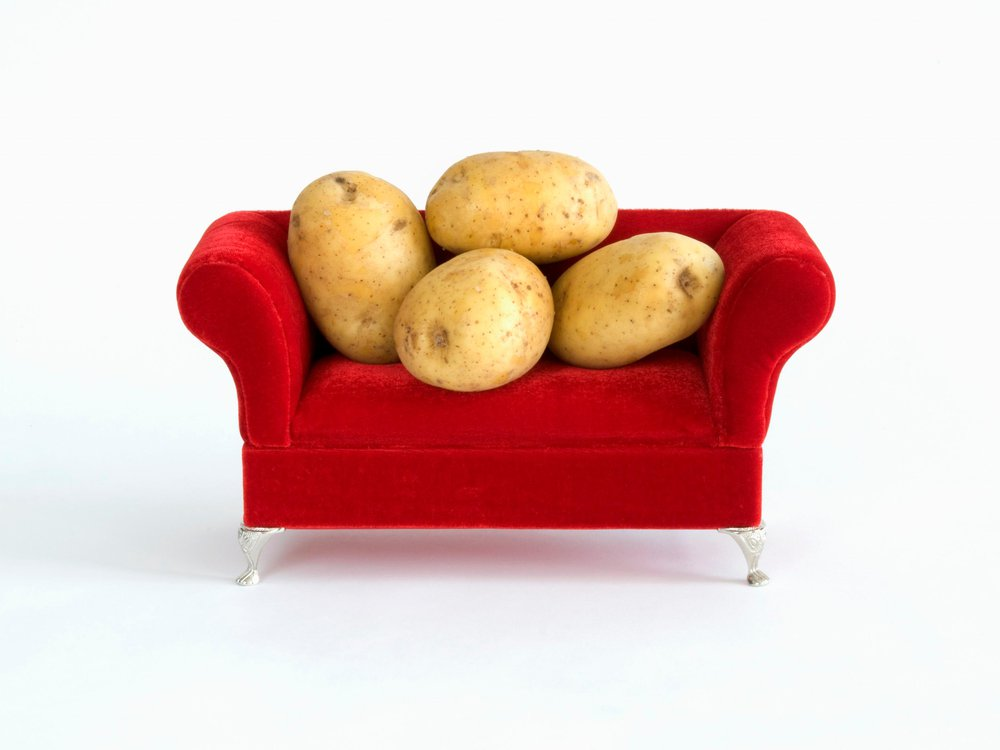 literal couch potatoes