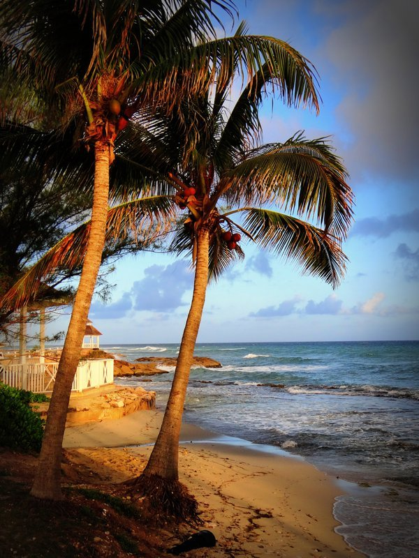 Beautiful  day in Montego Bay, Jamaica  thumbnail