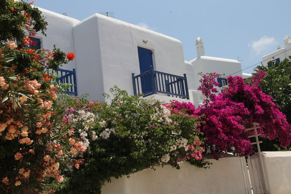 Mykonos flowers and door II thumbnail