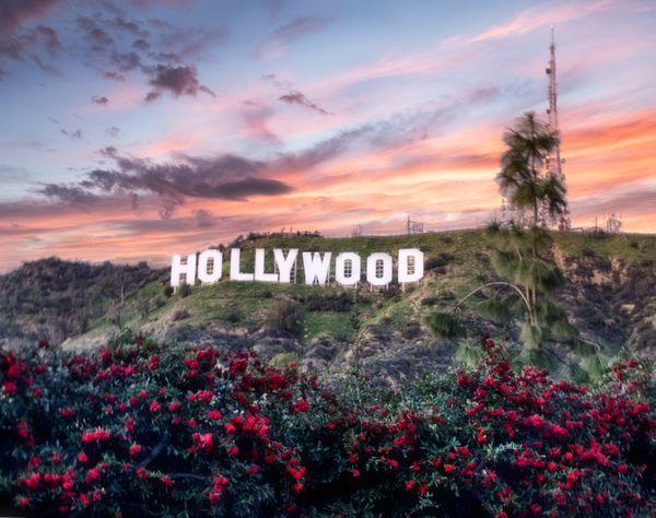 The Hollywood Sign thumbnail