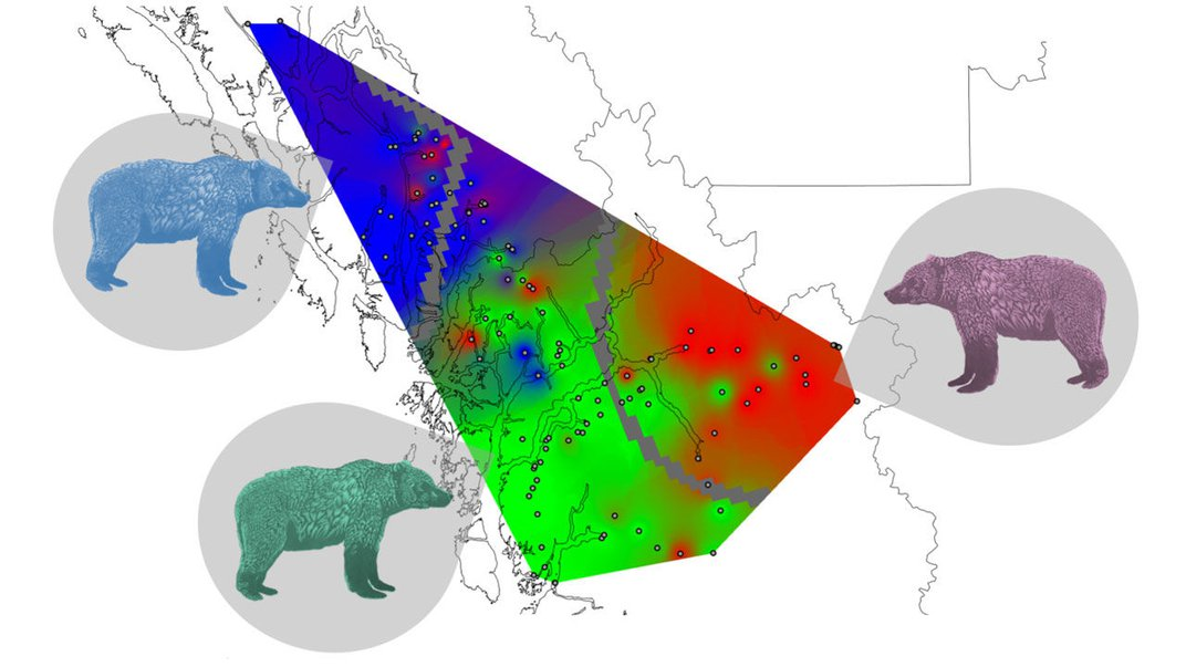 Grizzly Bear Territories in Canada Match Maps of Indigenous Language Families