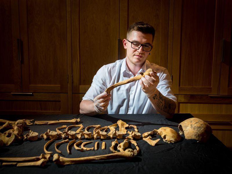 inspecting bones