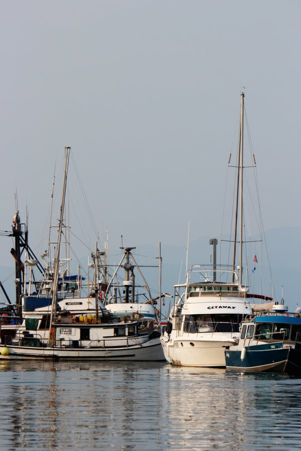 Ships in the Harbors of Juneau thumbnail