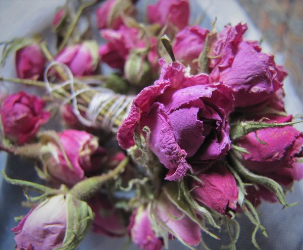 Dried flowers thumbnail
