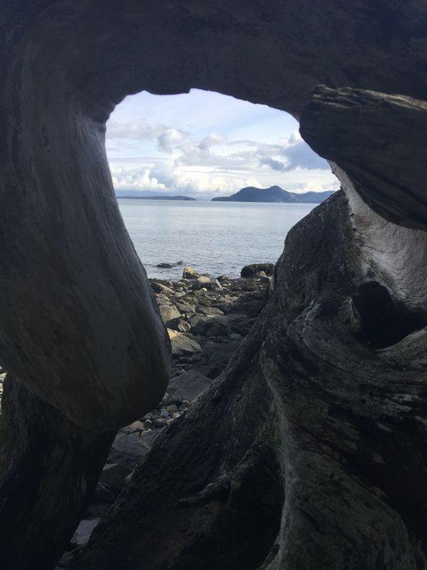 Across the Salish Sea thumbnail