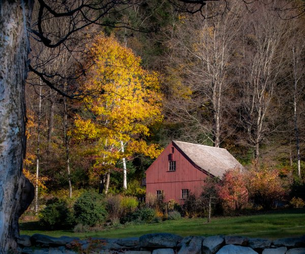 Fall in Northwest Connecticut  thumbnail