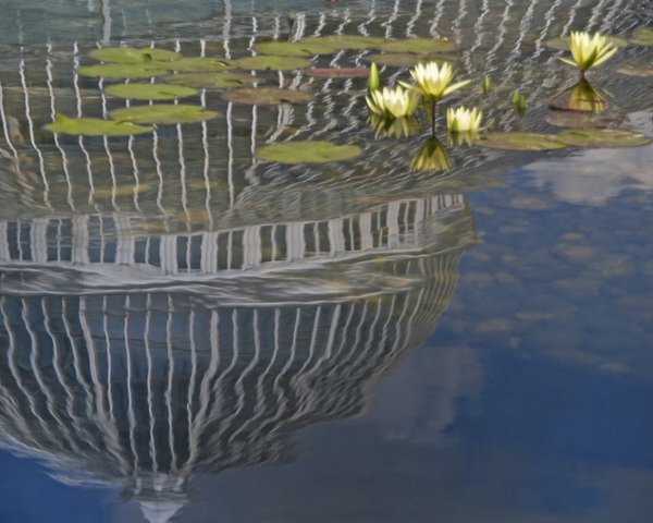 Conservatory Reflections thumbnail