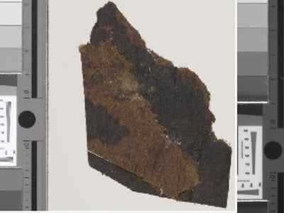 New fragments of the Dead Sea Scrolls with writing visible.