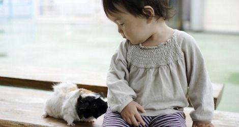 Autism-Pets-470.jpg