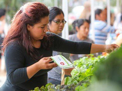 A FVRx participant picks out produce at LA's Central Avenue Farmer's Market.