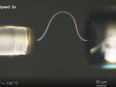 A thin strand of ice seen through a microscope in the process of bending under pressure. When the pressure is released the ice strand will spring back to its original shape.