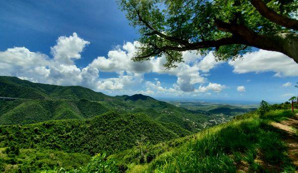 Puerto Rican Mountaintop  thumbnail