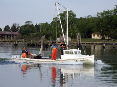 In 2018, the Chesapeake Bay Foundation published its midpoint assessment of the on-going restoration efforts for the country's largest estuary.