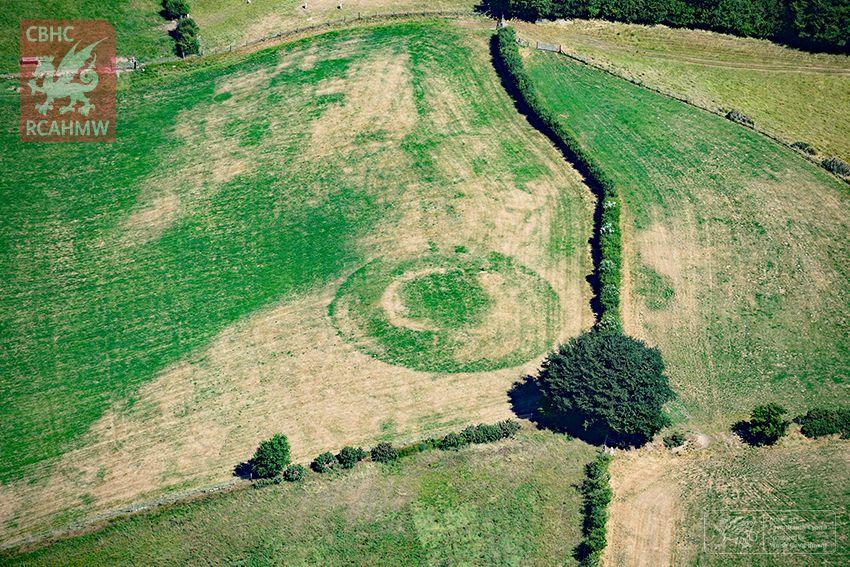 Crop marks.jpg