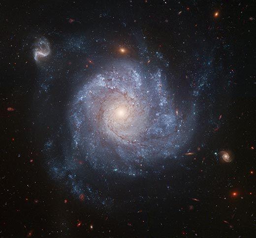 Galaxy NGC 1309
