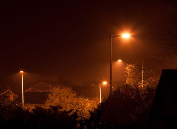 Suburban jungle, Taken at night thumbnail