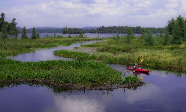 Adirondack Journey - ©Frances Quinlivan - Nikon D750 thumbnail
