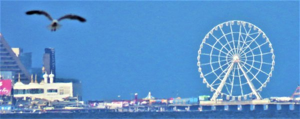 big wheel in atlantic city nj thumbnail