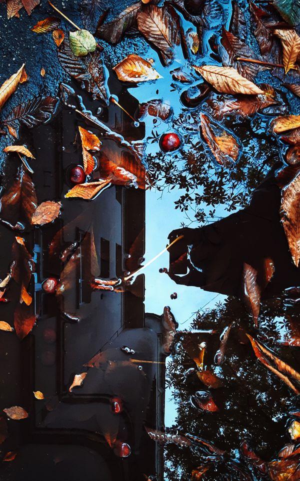 Autumn in Riga thumbnail