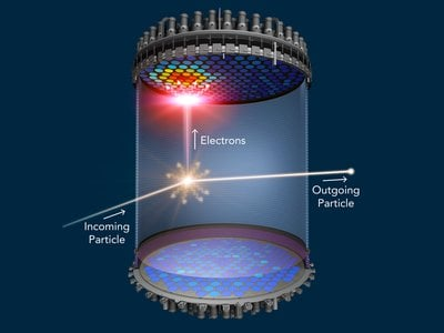 In the heart of a new dark matter detector, LUX-ZEPLIN (LZ), a 5-foot-tall detector filled with 10 tons of liquid xenon, will search for hypothetical dark matter particles to produce flashes of light as they traverse the detector.