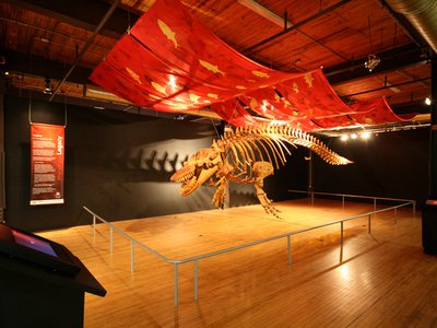 Legacy is scheduled to be on display at the Ontario Science Centre beginning in 2017 before embarking on an international tour.