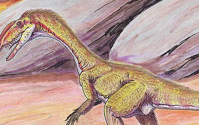 Fossil swim tracks indicate that theropods similar to this Megapnosaurus at least occasionally swam in prehistoric lakes and rivers.