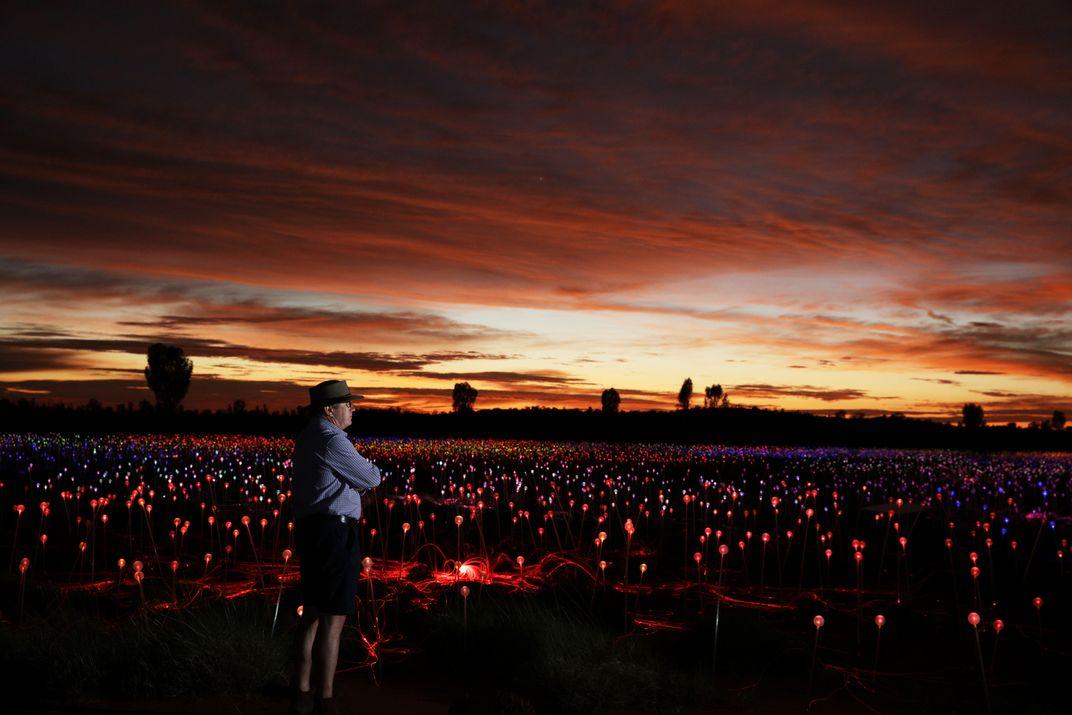 Stunning 'Field of Light' Surrounds Iconic Australian Rock