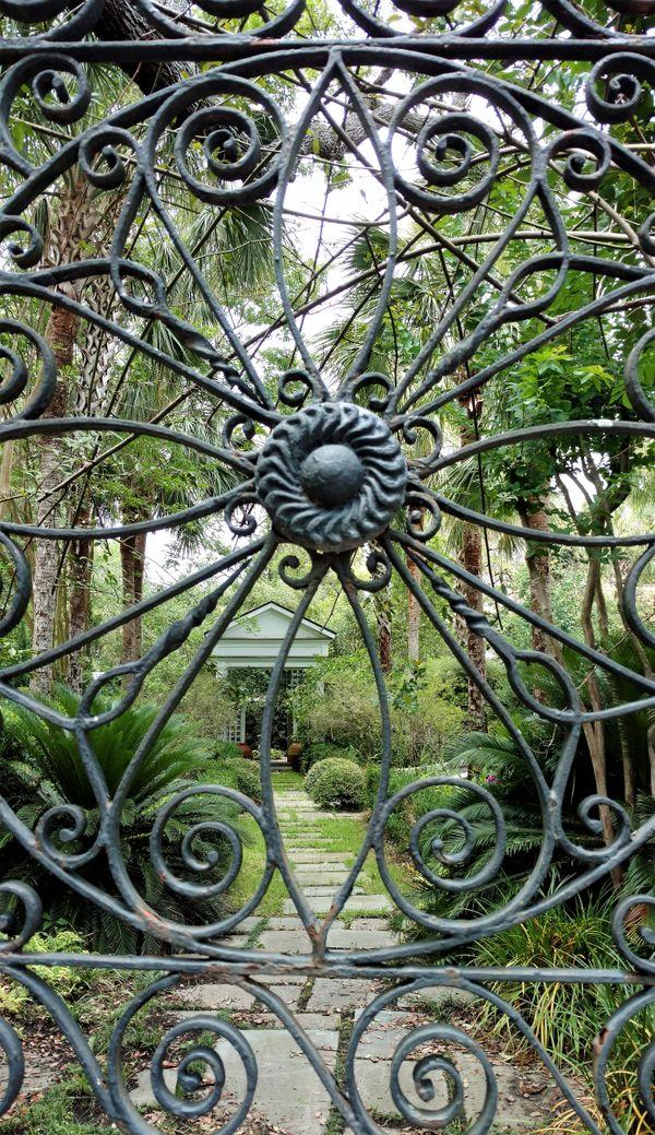 Through the gate thumbnail